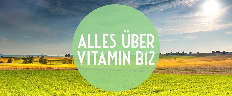 alles über Vitamin B12